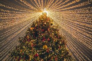 Eine_Weihnachtsgeschichte_Dezember_2020