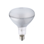 Incandescent Reflector (R125)